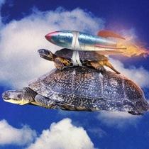 Turtle Rocket